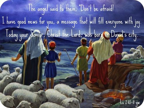 Angel&Shepherds