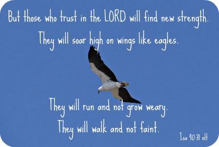 eagle-265501_640