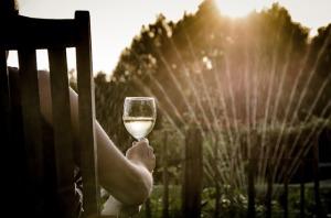 summer-895943_640