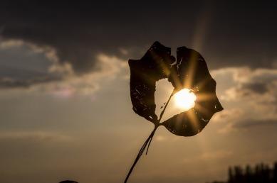 sun-622740_640-1